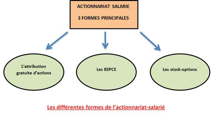 les principales formes d'actionnariat salarié
