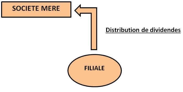 Holding et distribution de divifdendes