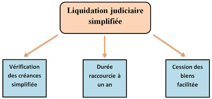 liquidation the procedure Companies under liquidation/ judicial management/ receivership companies that have commenced liquidation and companies.