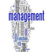 Manager : les styles de management de projets en Entreprise   LBdD